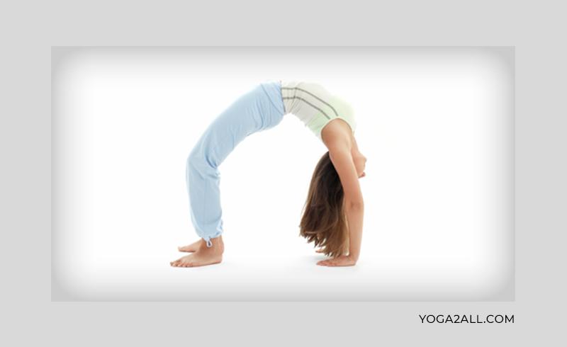 Mysore Ashtanga Yoga