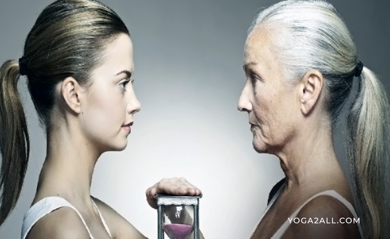 Accelerated-Aging-Processes