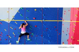gym-fitness-climb-02