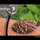 omega-3-