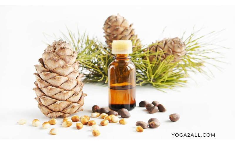 Cedarwood Oil