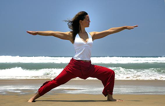 Yoga Pose Warrior