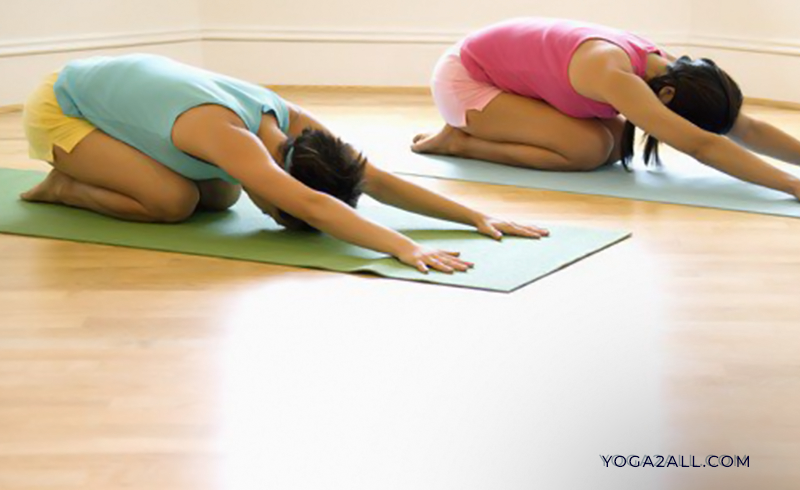 Top 5 Yoga Poses to Combat Back Pain