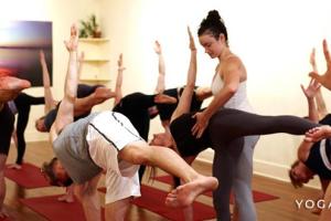 Yoga for Beginners.